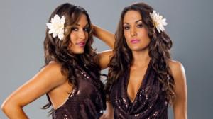 WWE Divas Bella Twins. Is Brie Bella Pregnant. View Original ...