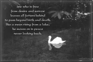 Inspirational Death Quotes And Sayings Spiritual quotes on being free