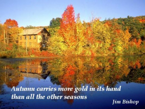 Falling for Autumn Quotes.