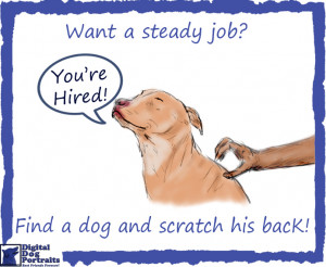 Pitbull Dog Quotes Funny