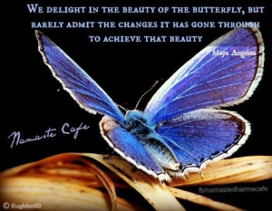 Beauty of butterfly change Maya Angelou quote via Namaste Cafe at www ...