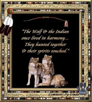 ... native american indian native american quotes ni nature quotes resized