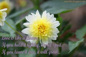 :flower,flower clip art,flower types,flower names,flower quotes ...
