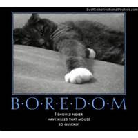 boredom quotes boredom best demotivational posters