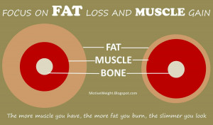 Focus on fat loss and muscle gain Fat Loss Quotes