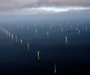 Germany builds wind energy reputation 2 months ago