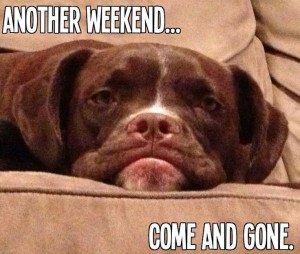 another weekend gone
