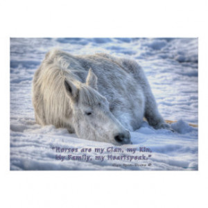 Horses are my Clan Quote Mare Asleep Motivational Print