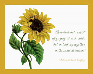 In love with Sunflower and Sunflower quotes and sayings!