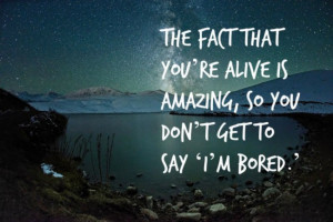 Louis CK quotes make for oddly satisfying motivational posters life is ...