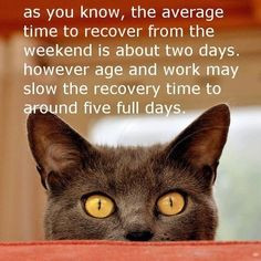 weekend recovery quotes. Days of the week. Have a great week. More