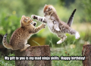 Ninja Cat Birthday Image