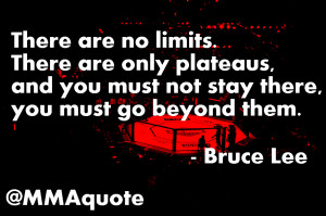 Fighter Quotes on Mindset