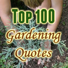 100 gardening quotes we ve compiled a fun educational list of garden ...