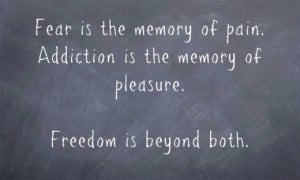 is the memory of pain. Addiction is the memory of pleasure. Freedom ...