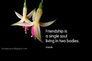 friendship quotes friendship quotes friendship quotes friendship ...