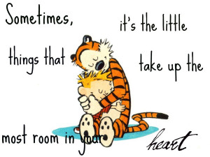 calvin and hobbes love