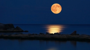 The full moon is a time of positive opportunity if you use it ...