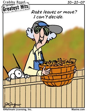 Funny Maxine Pictures