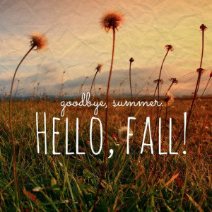 ... tags for this image include: fall, autumn, summer, flowers and hello