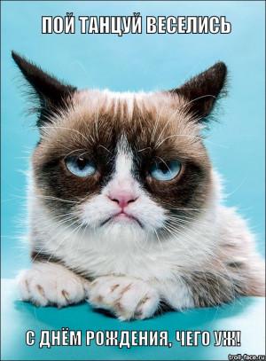 Безудержное веселье - грустный кот