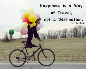 Does Travel Make Us Happier than Houses, Cars and Babies?