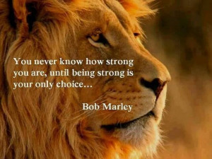 Amazing that this quote is from Bob Marley since it was one of Dons ...