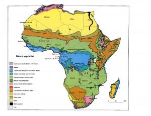 Africa Natural Vegetation Map