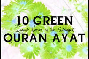 World Environment Day: 10 Quran verses on the environment and do-able ...