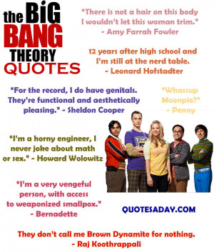 ... Quotes archive. Funny Quotes The Big Bang Theory picture, image, photo