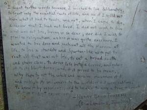 Chris McCandless Journal Quotes