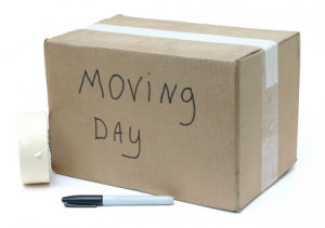 Tips to Ease Moving Day Strain When Pregnant
