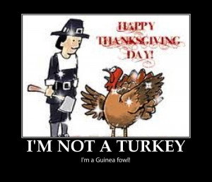 Funny thanksgiving pictures, happy thanksgiving pictures, funny ...