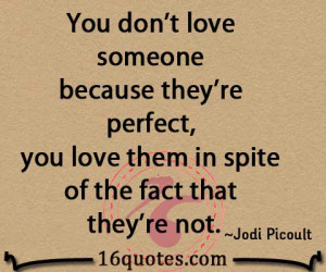 You don't love someone because they're perfect, you love them in spite ...
