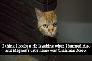 Mortal Instruments Funny Quotes