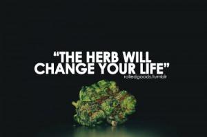 weed quotes quotes weed kush kushandwizdom