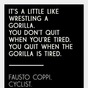Quote of the day: It's a little like wrestling a gorilla. You don't ...