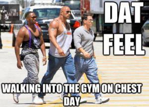 Gym Memes Pic 6