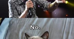 ... Title: Grumpy Cat Quotes Christmas sandizone − May 6, 2014 cat