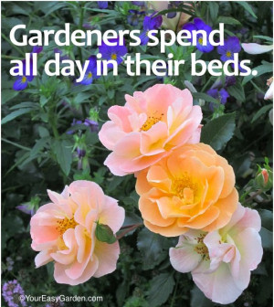 Favorite Gardening Quotes for the New Year