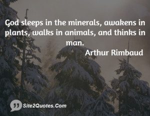 God sleeps in the minerals, awakens in plants, walks in animals, and ...