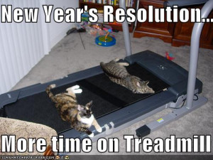funny-pictures-resolution-cats-treadmill