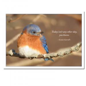 Bluebirds Birthday Card