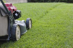 Grass cutting Milton Keynes | Grass cutting Bletchley | Hedge cutting ...