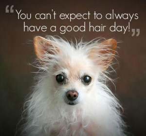 You can't always have a good hair day Picture Quote #1