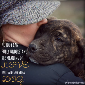 ... dog love in a number of ways! Here are 9 Easy Ways to Show Your Dog