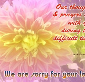 sorry for your loss quotes sorry for your loss quotes
