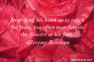 ... -stars-too-often-man-forgets-the-flowers-at-his-feet-flower-quote.jpg