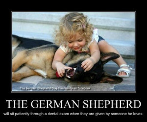Funny GSD Picture Signs - Laugh, Cry, Be Proud - German Shepherd ...