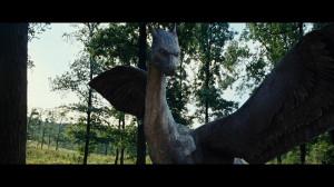 Saphira Dragonfanatic Credited